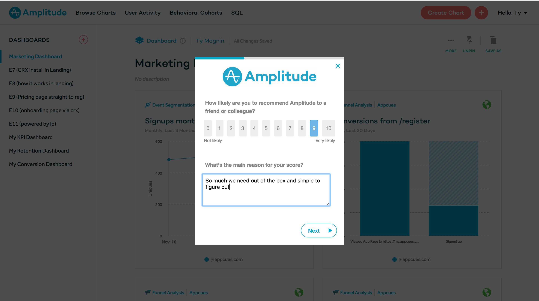 amplitude nps survey form 2