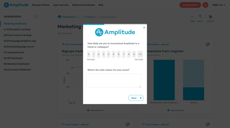 amplitude nps survey form